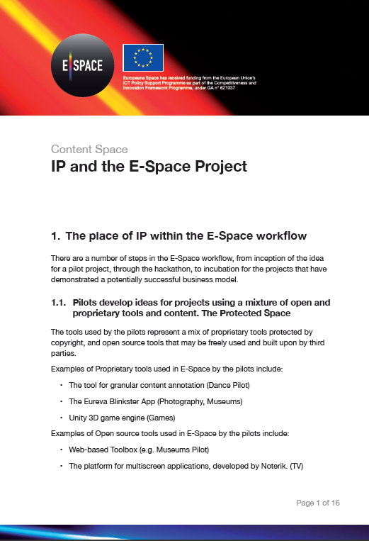 03. E-Space and IP factsheet